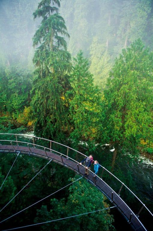 Flot natur venter ved Capilano Suspension Bridge tæt på Vancouver.