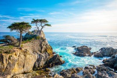 Fra San Francisco, hvor din rejse i autocamper kan begynde, er der ikke langt til Big Sur, som er et af de smukkeste steder langs Highway 1.