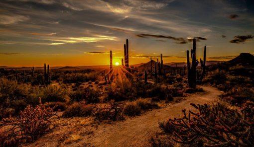 Autocamper Arizona