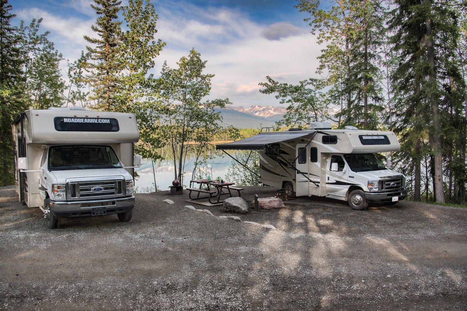 Road Bear campinghygge